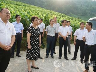 凌云县:商洛市委领导到凌云考察学习脱贫攻坚工作
