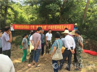 宁明县:粤桂扶贫协作项目――柠檬种植培训班成功举办
