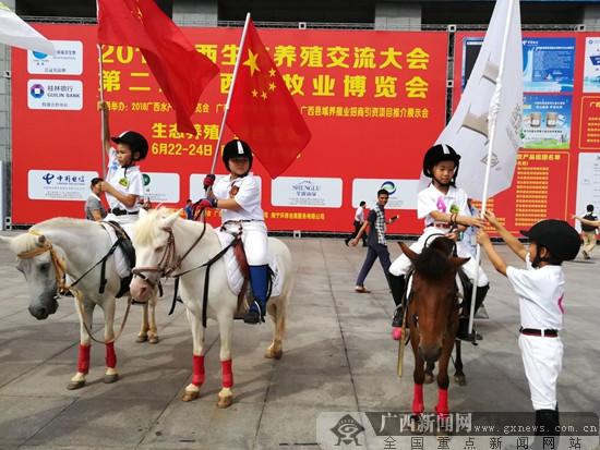 2018广西生态养殖交流大会暨广西畜牧业博览会开幕