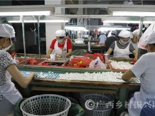 蒙山县:桑蚕产业带动精准扶贫发展