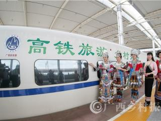 凌云县:高铁旅游助力乡村振兴 白毫茶香邀客来