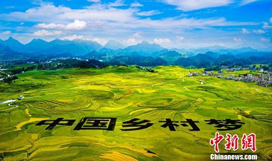 """广西演绎乡村""""变奏曲"""":家园靓丽农民""""生财有道"""""""
