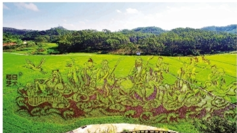 宾阳县:古辣镇呈现3公里稻田艺术景观带