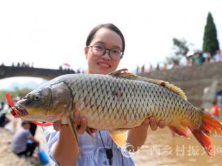 """融安县:丰收节""""闹鱼""""庆丰收"""