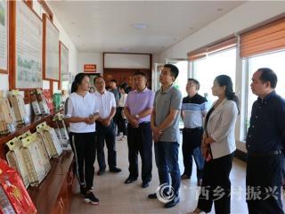 自治区农业厅对南丹县创建国家农产品质量安全县进行考评验收