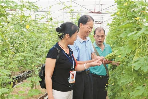 玉林村级集体经济强起来