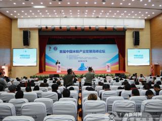 """""""首届中国米粉产业发展高峰论坛""""在邕宁区召开"""
