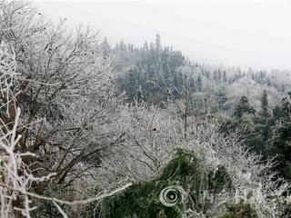 融安县福上村:桂北山村雪景美如画