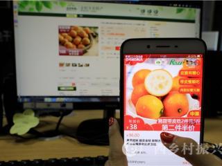 融安县:网络销售金桔超10亿元