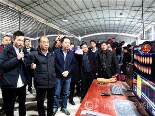 """融安县:金桔成为农民脱贫致富的""""幸福果"""""""