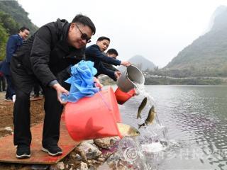 罗城县龙腾村:生态养鱼助增收