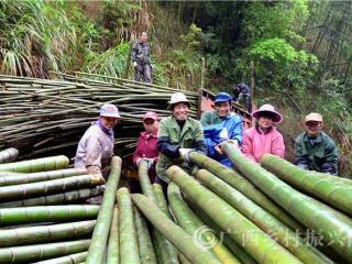 平桂区:竹产业助推贫困群众增收致富