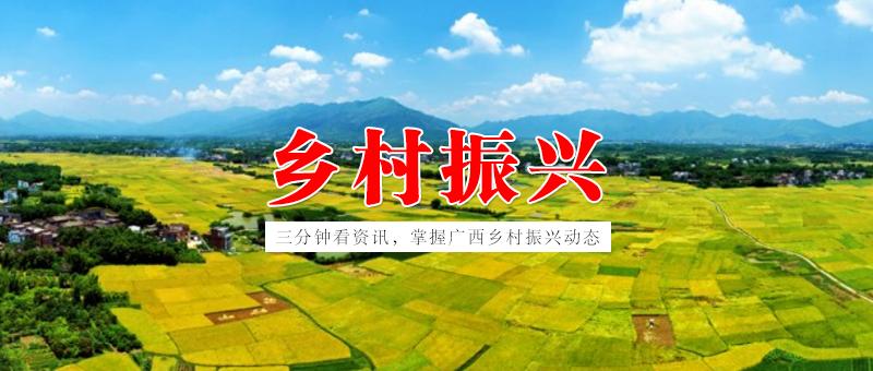 【2019.4.30】三分钟看资讯,掌握广西乡村振兴动态   广西今年集中推动新一轮兴边富民行动 打造八大特色产业