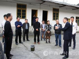 """南宁餐饮企业家到南丹县开展""""南丹瑶鸡走上电商""""专项考察调研"""