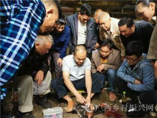 南丹县:加强职业农民培育  提高养殖经济效益