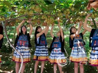 """南丹县:积极探索""""幸福乡村""""大发3d平台与乡村旅游扶贫融合发展新路子"""