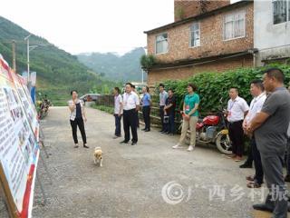 凌云县:人大代表开展专项视察助力脱贫攻坚