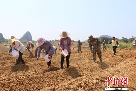 螺蛳粉走红带动广西贫困村发展集体经济