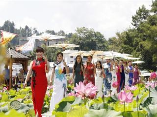 南丹县巴平村:万名游客相约荷花季