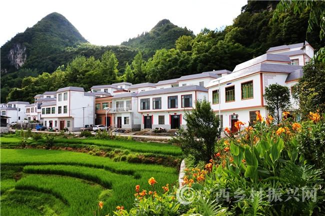 南丹县巴平村:强基础 铸品牌 构建乡村振兴发展新业态