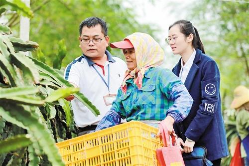 西乡塘区:管好用好集体资金 让贫困村民享受实实在在福利