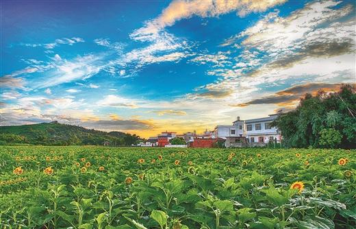 仙鹿歌唱的地方,如此让人眷恋 ――聚焦鹿寨县争创广西特色旅游名县