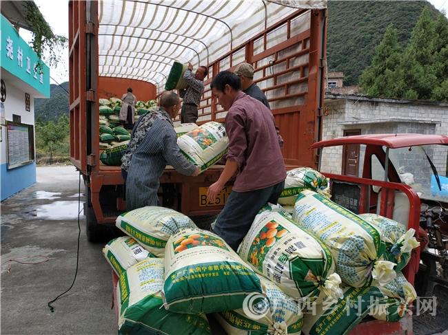 环江县:北投集团认购3.6万斤稻米助农增收