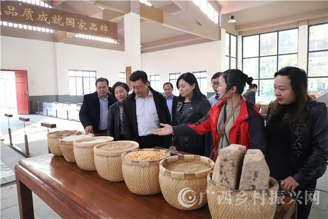 自治区田园综合体调研组到南丹县进行项目中期监测评估调研