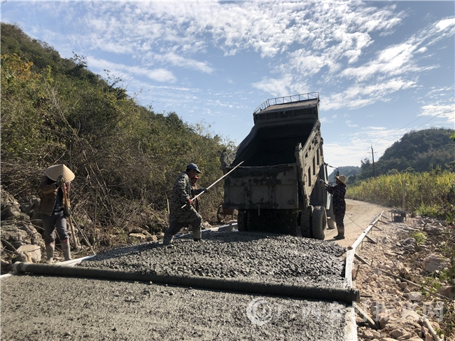 融安县:铺设产业路  产业扩销路