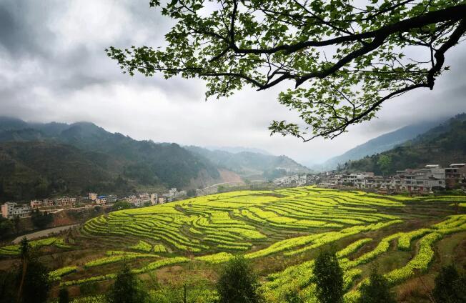 """厉害了!广西22个村有望评上""""全国乡村旅游重点村"""""""