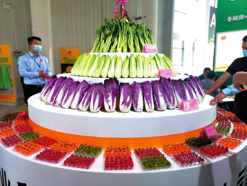 首届中国(广西)-东盟现代种业发展大会展出新品种