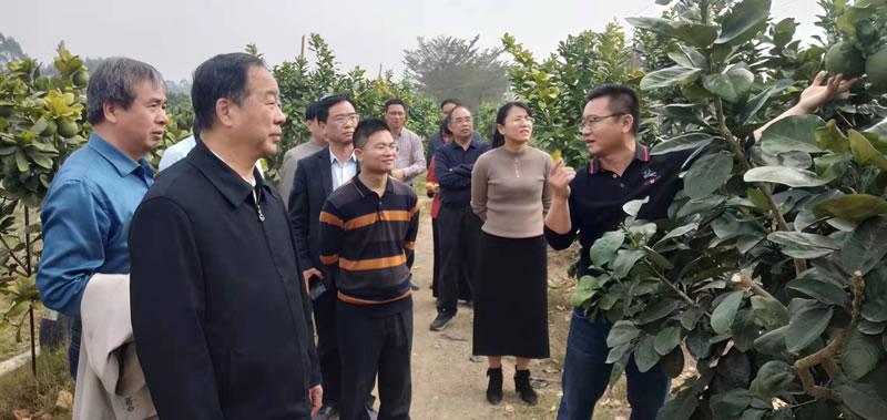 """博白县:荣获""""全国富硒农业示范基地""""称号"""
